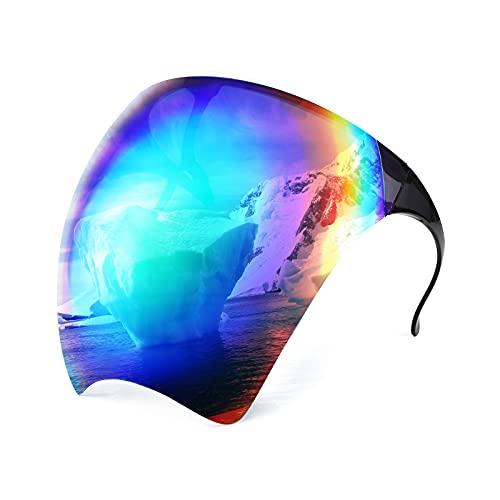 FEISEDY Full Cover Face Visor Protective Glasses Mirror Shield Sunglasses Anti Fog B2781