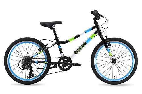 Guardian Ethos Safer Patented SureStop Brake System 20' Kids Bike, Black/Blue/Green