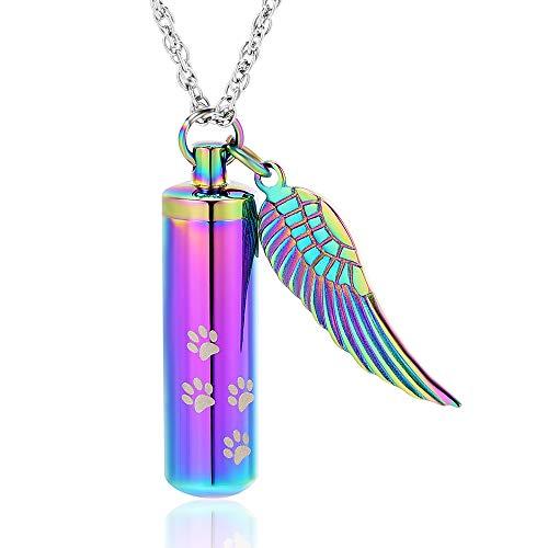 shajwo Cremation Jewelry Paw Print Urn Necklaces for Human Pet Ashes Cylinder Urn Pendant Keepsake Memorial Ash Locket Holder Necklace for Men Women,Rainbow