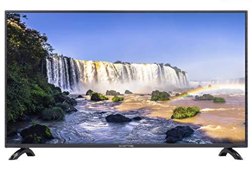 Sceptre 40' Class FHD (1080P) LED TV (X405BV-FSR)