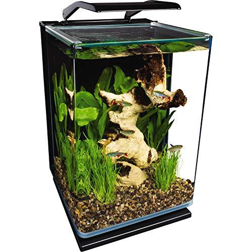 Marineland Portrait Glass LED aquarium Kit, 5 Gallons, Hidden Filtration