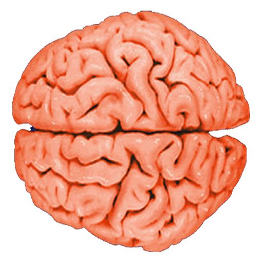 Brain Tap